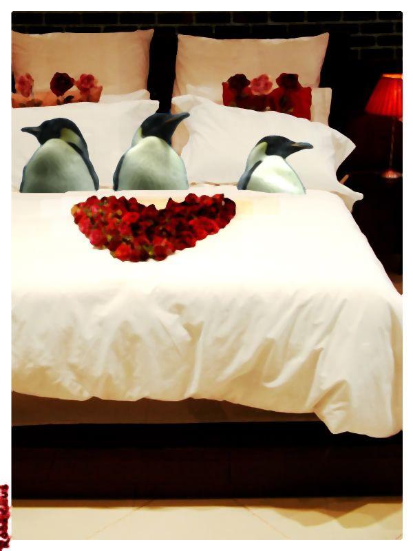 Pingüinos en la cama
